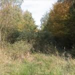Natura 2000 avant