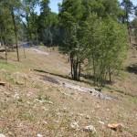 Natura 2000 - Logne après