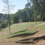 Natura 2000-Logne terminé
